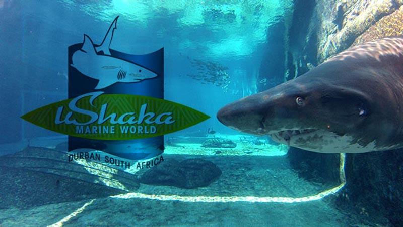 Ushaka Marine World – Situated in the heart of Durban on the Kwa Zulu-Natal Coast.