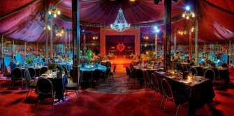 Madame Zingara – A World of its Own