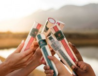 Wine Popsicles Now Available in South Africa