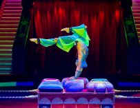 THE GREAT MOSCOW CIRCUS IS COMING TO SUNCOAST!