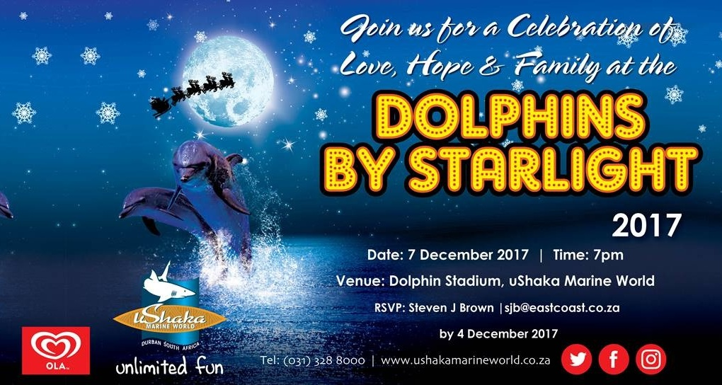 Dolphins by Starlight